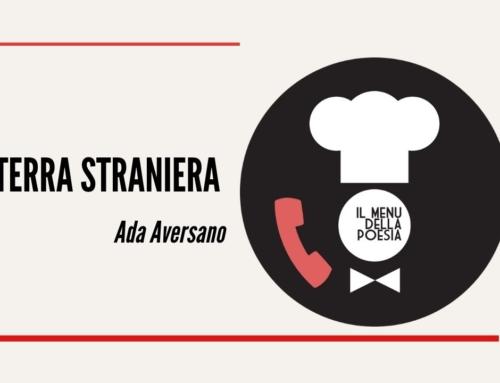 TERRA STRANIERA di Ada Aversano